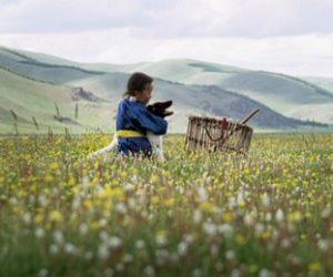 İki Yalnızlık Arasında:  Kent ve Doğa