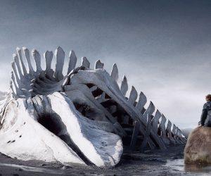 Leviathan : Disiplinin Bedeni