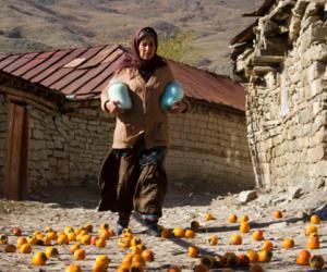 Dağların Arasında Işığın Savaşı: Elchin Musaoglu ile Nabat Üzerine Söyleşi