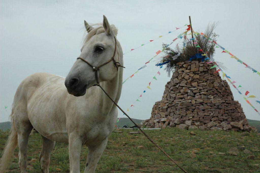 Benim Kutsal Atım / My Avatar Horse