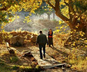 Ceylan Kasabasına Geri Dönüyor: Ahlat Ağacı (2018)